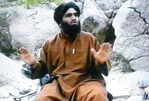Menantu Osama ditangkap penguatkuasa AS