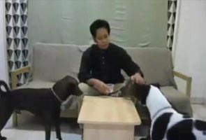 Saya tidak akan minta maaf, kata pembikin video Raya bersama anjing