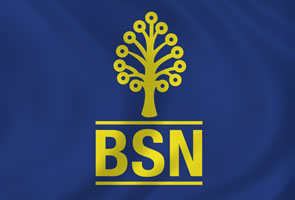 BSN transformation programme bears fruit