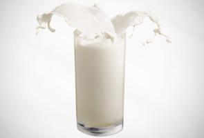Kementerian pantau kes susu dari New Zealand yang tercemar bakteria