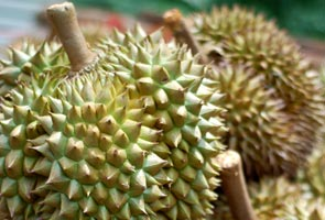 'Pesta Durian' melanda Parlimen