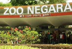 Harga tiket RM30 memasuki Zoo Negara dianggap mahal