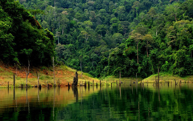 Serenity at Tasik Temenggor, Perak