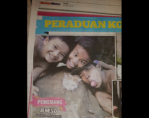 Buried cat photo not funny, say netizens