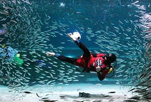 SOUTH KOREAN DIVER PLAYS FOOTBALL IN AQUARIUM