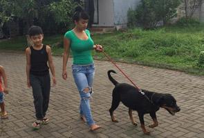 Julia Perez berpeluk sakan dengan anjing undang kemarahan umat Islam Indonesia