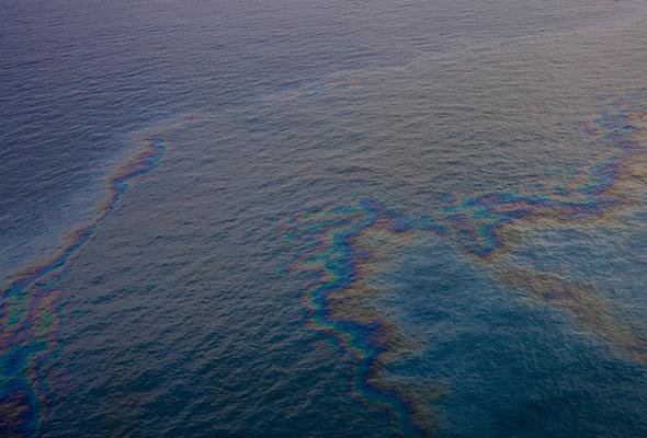 Tumpahan minyak boleh jejas habitat marin - Aktivis