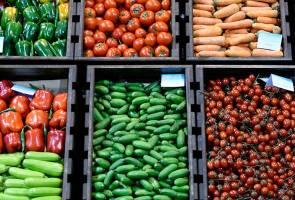 Makanan yang tinggi antioksida penting untuk kekalkan tahap kesihatan - Pakar pemakanan