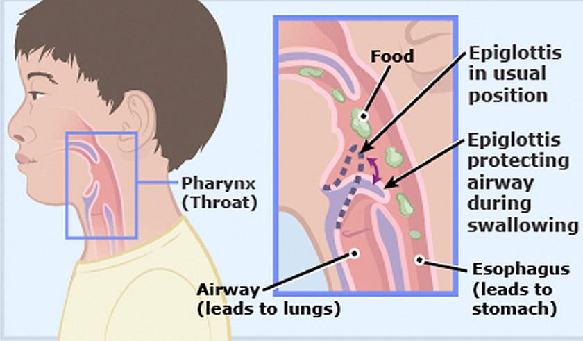 Aliran udara ke paru-paru.