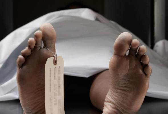 Mayat lelaki ditemukan dalam ladang kelapa sawit