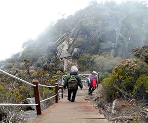 Gunung Kinabalu : Pendakian selepas gempa bumi