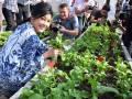 Yingluck gantikan politik dengan berkebun