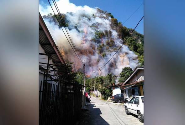 Hutan Batu Caves terbakar