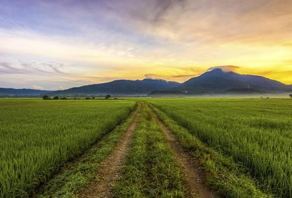 Datuk Seri Tajuddin Abdul Rahman yakin ia tidak dilakukan sewenang wenangnya kerana potongan dibuat berdasarkan kualiti padi yang dijual.
