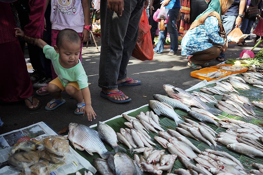 Pekan Sehari Temerloh popular dengan pengunjung dari dalam dan luar daerah yang ingin mendapatkan pelbagai jenis ikan sungai. - Gambar fail