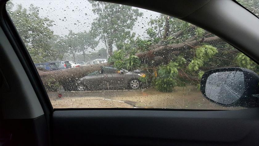 Hujan ribut itu bermula pada jam 6 petang hingga mencetuskan panik dalam kalangan pekerja pejabat kerajaan dan swasta di sekitar kawasan berkenaan.