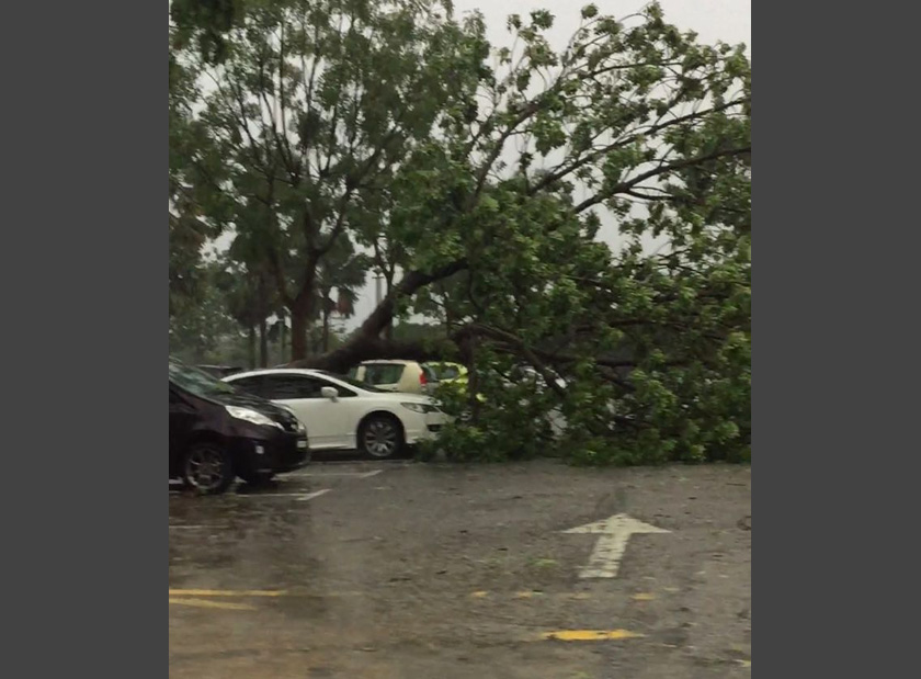 Witnesses claim that at least 10 vehicles were damaged by the hailstorm. - Astro AWANI