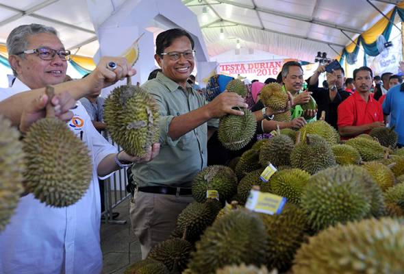 Musang King bakal tembusi pasaran China