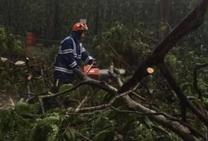 Ribut, hujan lebat di KL akibatkan pokok tumbang hempap kereta