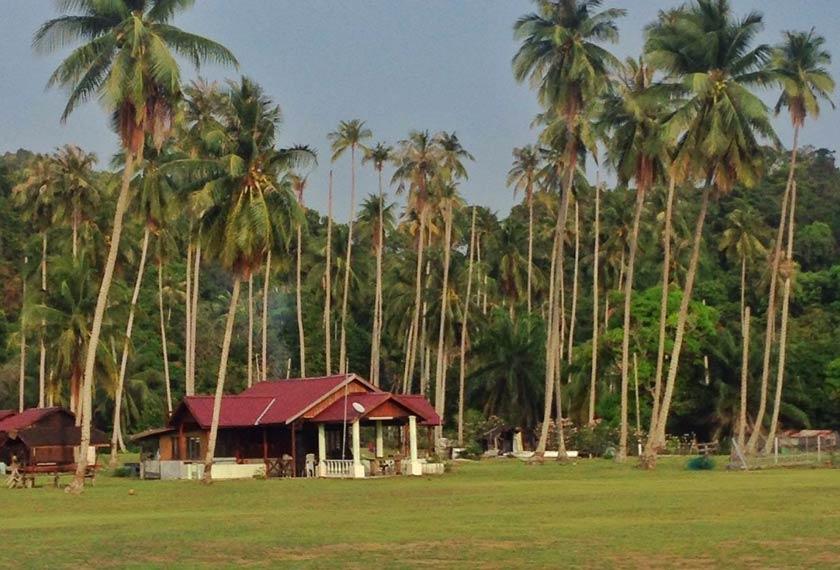Rindukan suasana kampung? Bayangkan sajian pemandangan ini ketika berada di Pulau Sibu. - Foto Astro AWANI/HAMZAH HAMID
