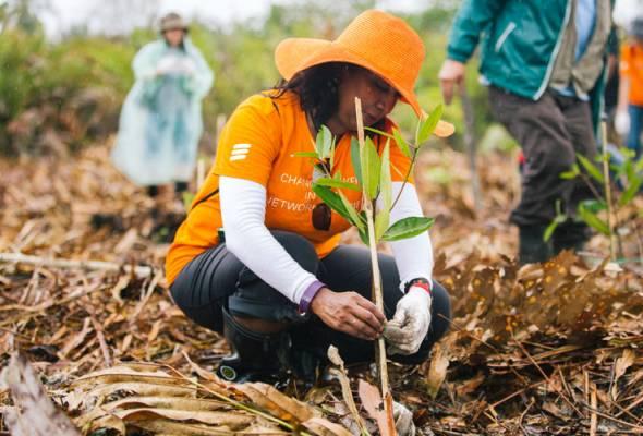 Projek pemuliharaan hutan paya bakau 'Connected Mangroves' oleh Ericsson terima anugerah PBB