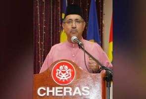 Pengkhianatan ahli beri kesan buruk kepada UMNO - Syed Ali