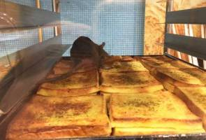Rat on tray: Komugi Bakery Malaysia apologises