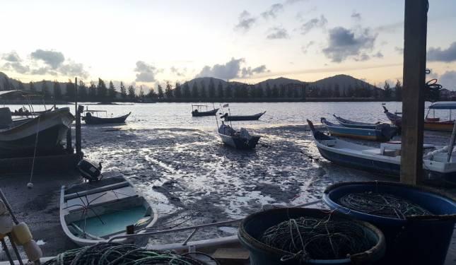 Rakusnya pembangunan: apa nasib alam sekitar di Teluk Muroh?