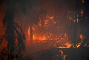 Kebakaran besar di Israel 'tindakan pengganas' - Netanyahu
