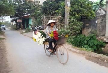 Petani-petani bunga dari Nam Dinh