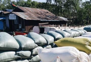 Beras Paw San: Peluang Myanmar untuk kembali ke peringkat antarabangsa?