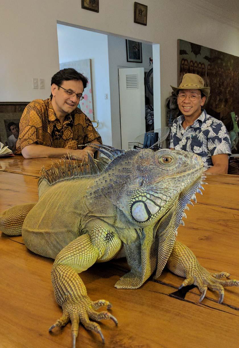 Iguana Columbia Hijau milik Kuya Kim Atienza, Bert, baru saja terbangun dari tidur sebelum dibawa untuk menyertai sesi wawancara