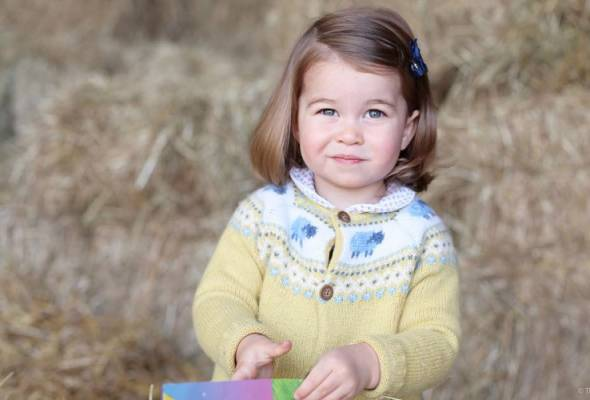 A new photograph of Britain's Princess Charlotte was released by the royal family on Monday to mark her second birthday.