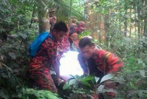UiTM tidak mohon permit masuki hutan simpanan kekal - Wan Junaidi