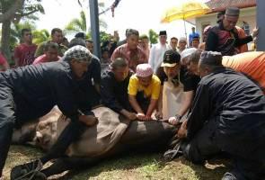 Sultan Muhammad V graces 'ibadah korban' in Kota Bharu