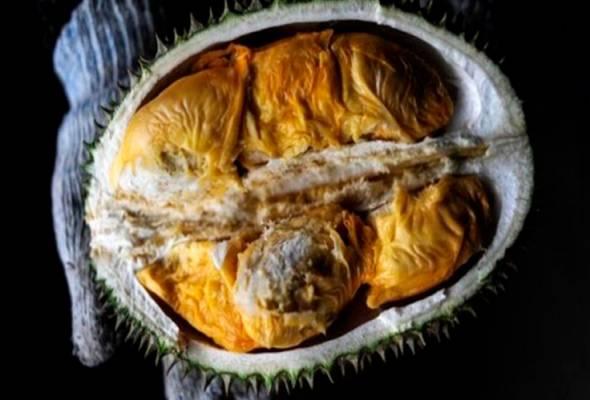 Durian busuk cetus panik
