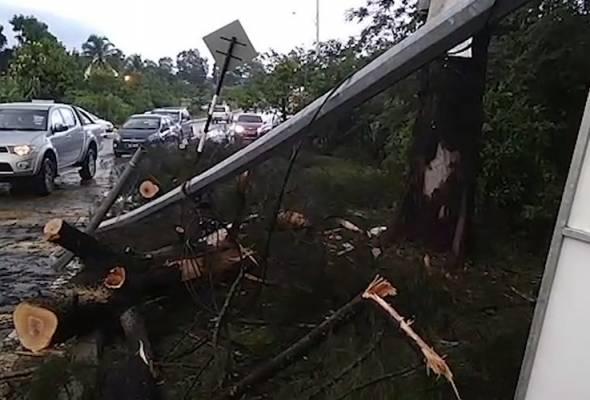 Kereta dihempap pokok tumbang