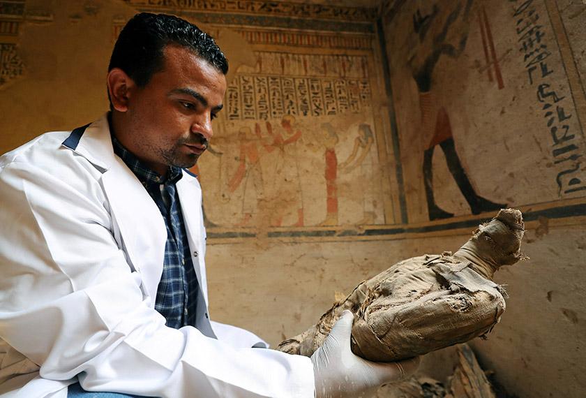 Pakar arkeologi melihat satu mumia burung yang disimpan dalam makam tersebut. - Reuters