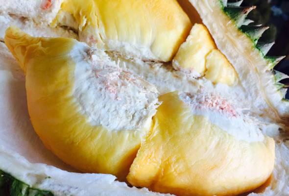 12 pekerja pos Jerman masuk hospital gara-gara terhidu bau durian