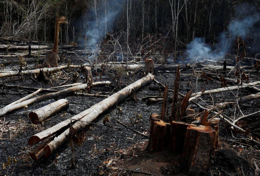 Kemusnahan hutan Amazon satu tamparan hebat kepada penduduk Bumi. - Reuters