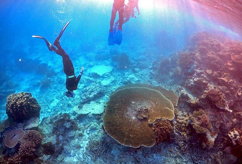 Pemusnahan terumbu karang antara lain disebabkan aktiviti manusia yang mencetus perubahan iklim. - Reuters