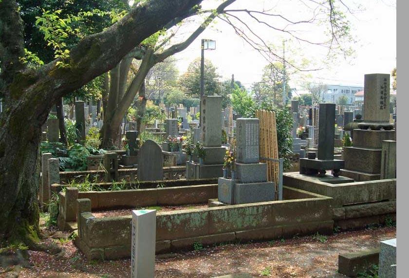 Yanaka Cemetery tempat 'lepak' kucing-kucing jalanan di pekan ini.