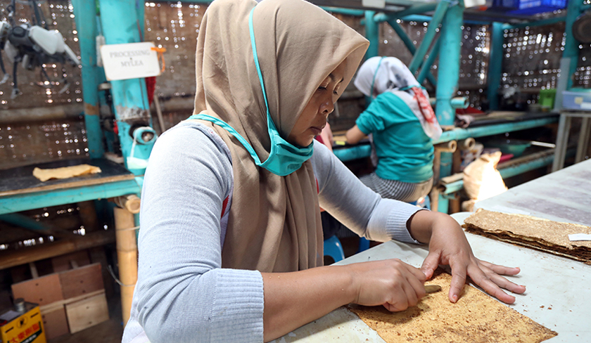 Seorang pekerja memotong material mycelium mengikut kegunaannya. - Reuters
