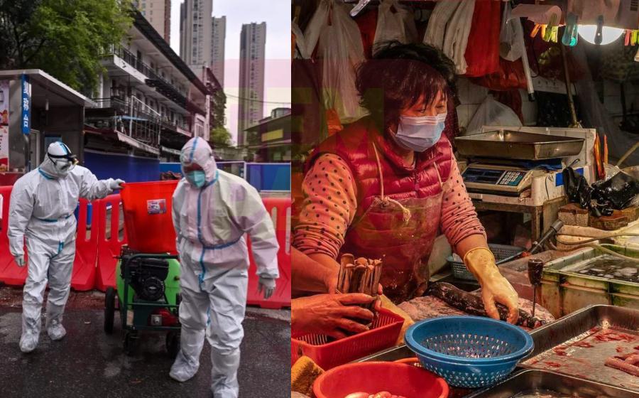 Pasar haiwan eksotik Wuhan dibuka semula?