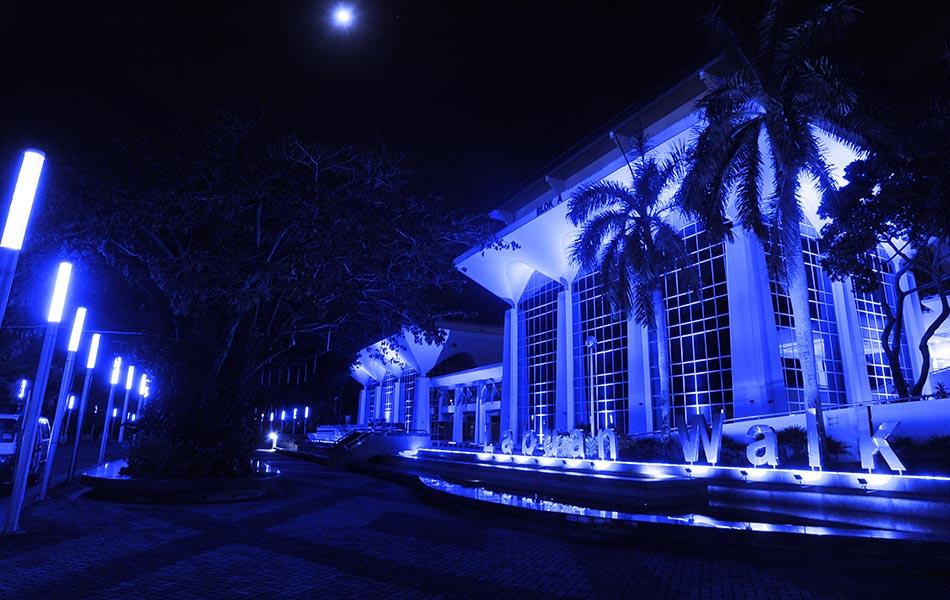 #LightItBlue, Light It Blue