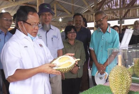 Standard Durian Kampung Premium dilancar mudahkan rujukan