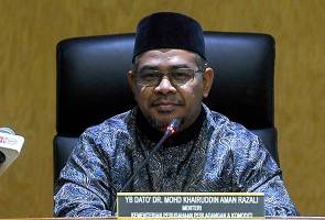 Malaysias palm oil market expected to rebound - Khairuddin 2
