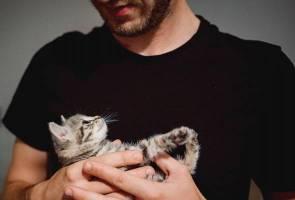Wanita kurang tertarik dengan lelaki pencinta kucing - Kajian 3