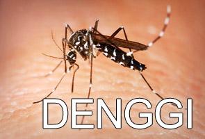 Pusat penternakan nyamuk terbesar di Kuala Lumpur? | Astro Awani