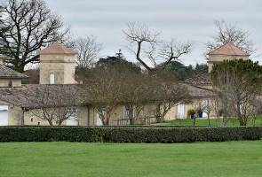 Alibaba founder buys up two more French vineyards